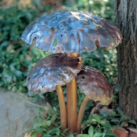 Toadstool Multi-Stem-2